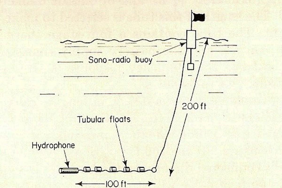 p031-1954-buoy-hydrophone-deployment