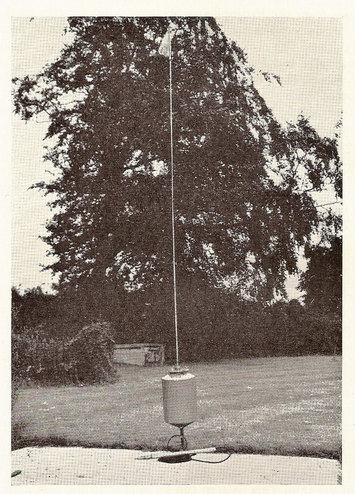 p029-1954-buoy